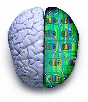 Cerebro Ordenador - Más Allá de la Formación